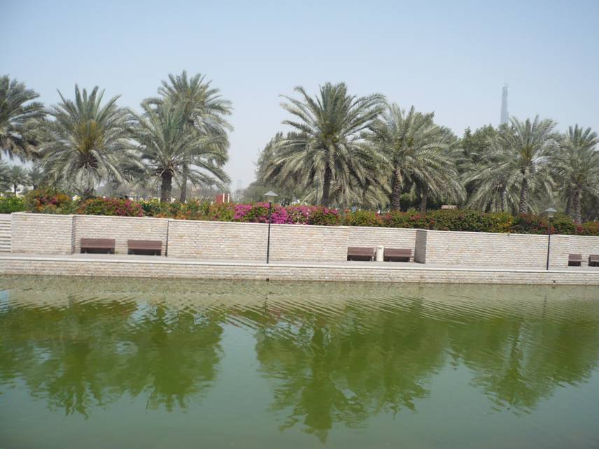 Al Safa Park in Dubai, UAE (5/6)