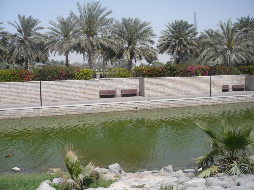 Al Safa Park in Dubai, UAE (6/6)